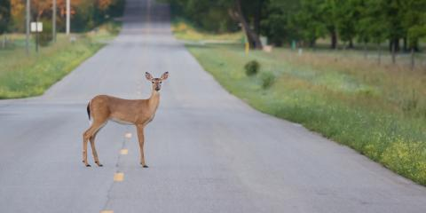 4 Ways to Stay Safe on the Road This Spring, La Crosse, Wisconsin