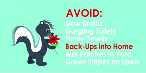 3 Signs Your Septic System Is Failing, Olin, North Carolina