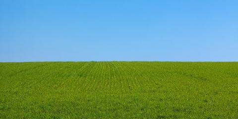 The Importance of a High-Quality Lawn Mower, Hebron, Nebraska