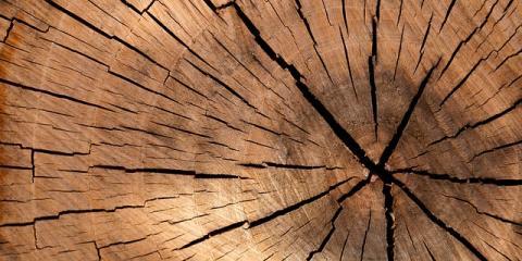 Splitting Wood? Find the Perfect Wood Splitter for Any Job, West Bridgewater, Massachusetts