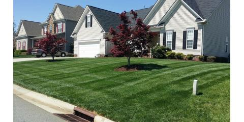 Healthy, Green, Weed Free Lawns Are Created During Fall & Winter, Denver, North Carolina