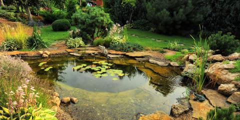 5 Reasons to Install a Pond in Your Yard, Sagamore Hills, Ohio