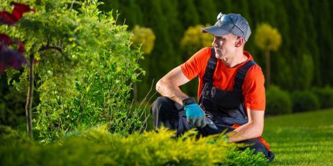 3 Ways to Make Over an Overgrown Garden, Ballwin, Missouri