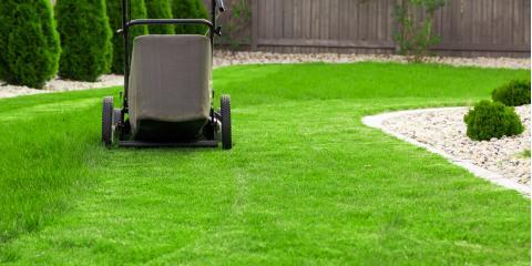Essential FAQ About Grubs & Lawn Care, Ballwin, Missouri
