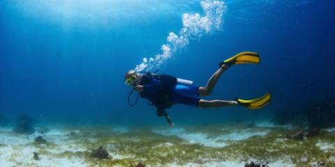 3 Experiences You'll Have During Your First Scuba Diving Trip, Honolulu, Hawaii