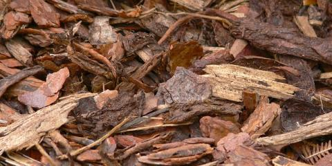 4 Important Benefits of Mulch Services, Stuarts Draft, Virginia