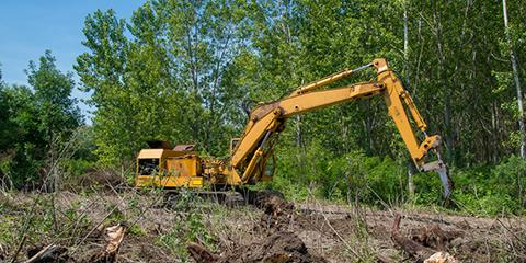 4 Important Factors of Lot Clearing for New Construction, Bastrop, Texas