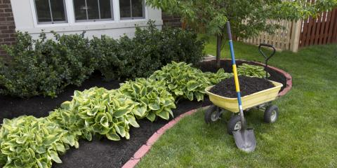 Why Scalia's Landscape is the Best Landscape Contractor in Western NY, Batavia, New York