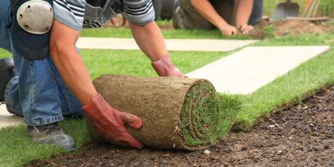 Planning a New Landscape Design: DIY vs. Hiring Professionals, Batavia, New York