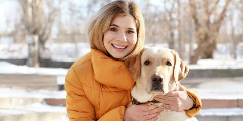 How to Keep Your Dog's Skin & Fur Healthy in the Winter, Batavia, Ohio