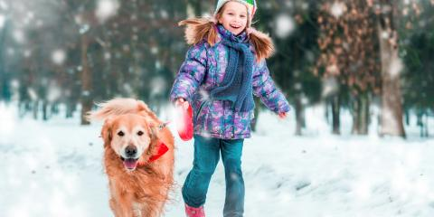 5 Ways To Keep Your Pet Healthy This Winter, Batavia, Ohio