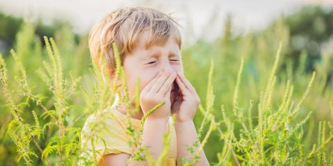 Battling Fall Allergies With Your HVAC System, Girard, Ohio