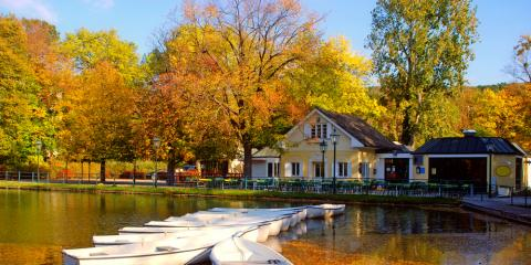 3 Reasons Fall Gutter Cleaning Is Necessary Before Winter, Columbus, Ohio