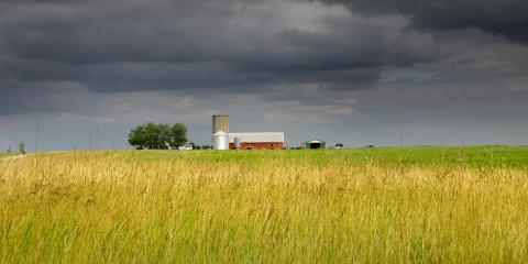 5 Ways Weather Impacts the Growth of Crops , Beatrice, Nebraska