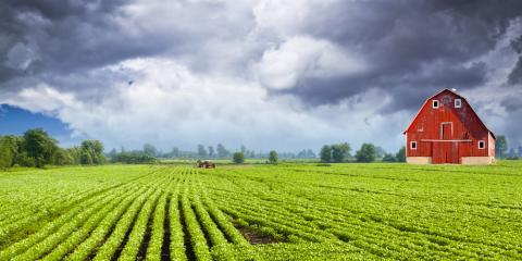 3 Important Qualities Your Farm Insurance Company Should Possess, Beatrice, Nebraska