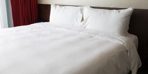What to Expect from Bed Bug Treatment, Manchester, Connecticut