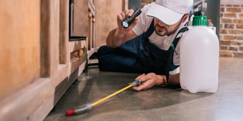 The Dos & Don'ts of Prepping For Bedbug Treatment, St. Charles, Missouri