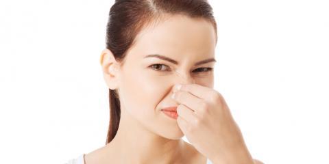 3 Reasons Behind Sewer Smells in Bathrooms, La Crosse, Wisconsin