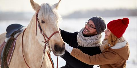 5 Tips to Keep Horses Comfortable During the Winter, Bethel, Ohio