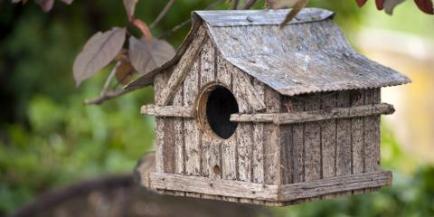 3 Ways Birdhouses Protect Your Garden, Bethel, Ohio
