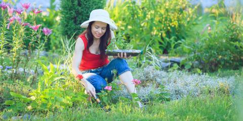 The Do's & Don'ts of Summer Gardening Protection, Bethel, Ohio
