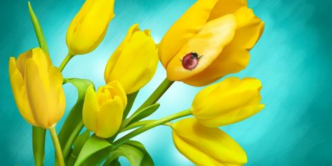 Bethesda Funeral Home Welcomes Spring & Wishes You a Happy Easter, Barnesville, Ohio