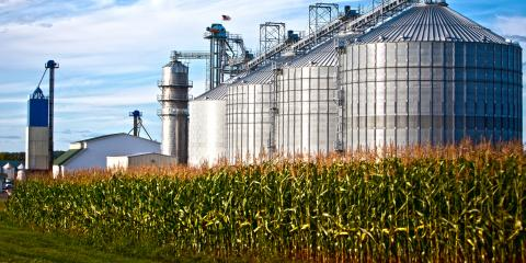 How is Biofuel Good for the Environment?, West Haven, Connecticut