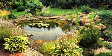 Why Spring Cleaning for Your Pond Is So Important, East Bloomfield, New York