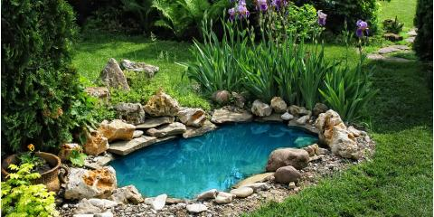 4 Factors to Consider When Choosing Pond Colorants, East Bloomfield, New York
