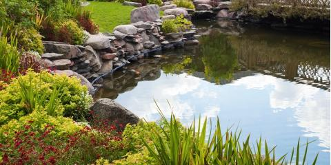 5 Telltale Signs Your Pond Needs Aeration, East Bloomfield, New York