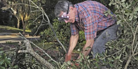 3 Storm Cleanup Steps for Fallen Trees, Florence, Kentucky