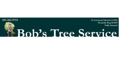 Bob's Tree Service, Tree Removal, Services, Southbury, Connecticut