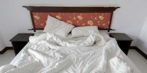 Where Do Bedbugs Love to Hide?, Bolivar, Missouri