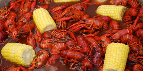 The Differences Between Crawfish & Shrimp, Bon Secour, Alabama