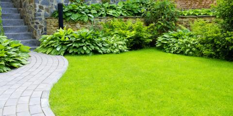 Top Landscaping Improvements to Boost Your Home's Curb Appeal, Cromwell, Connecticut