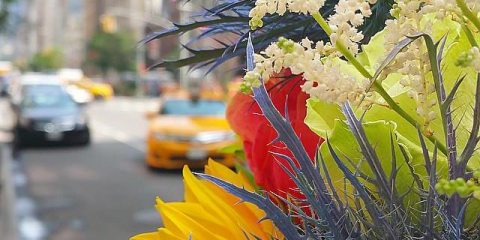 What Is Sustainable Living? Answers From a NYC Sustainable Real Estate Team, Manhattan, New York