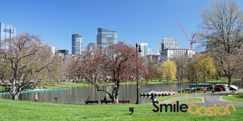 Smileboston Cosmetic and Implant Dentistry , Cosmetic Dentistry, Health and Beauty, Brookline, Massachusetts