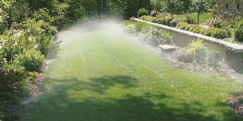 Summer Lawn Care: Disease & Fungus Issues to Watch For, West Chester, Ohio