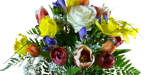 Designs North Florist & Interiors, Florists, Shopping, Greensboro, North Carolina