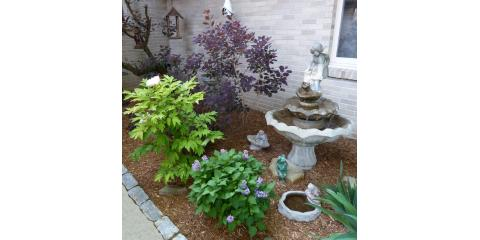 Alternatives to Salt That Won't Harm Custom Landscaping in Winter From Eagle Creek Landscape & Design, Taylor Creek, Ohio