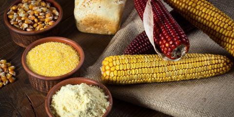 A Brief History of Corn as a Crop, Genoa, Michigan