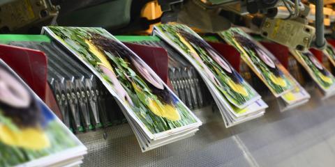 4 Fantastic Folding Options for Brochures, Ogden, New York