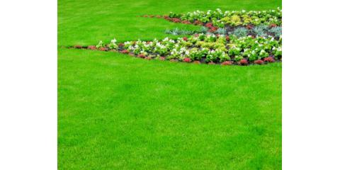 Eliminate Weeds Once And For All With The Help of Landscaping Service by Brockman Tree & Lawn Care, Perinton, New York