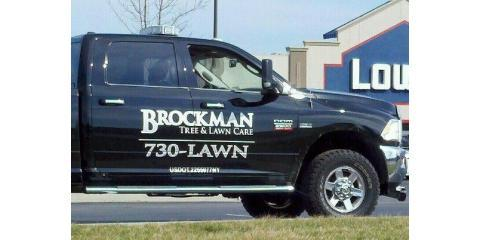 What Everyone Needs to Know About Tree Service From Brockman Tree & Lawn Care, Perinton, New York