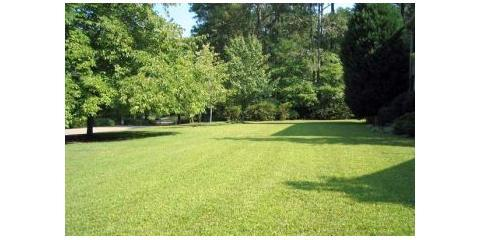 For Greener Gr This Spring Choose Professional Landscaping From Brockman Tree Lawn Care