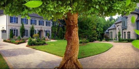 Brockman Tree Lawn Care