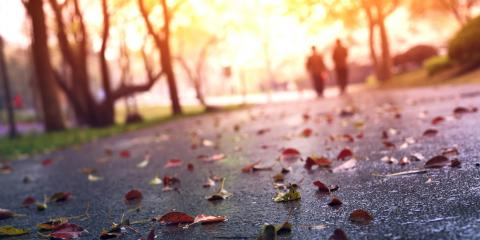 3 Common Causes of Slip & Fall Injuries in Autumn, Bronx, New York