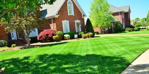 5 Ways Ground Squad Provides Exceptional Residential Lawn Care, Buffalo, Minnesota