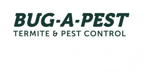 5 Pests That Can Affect Your Health, Maineville, Ohio