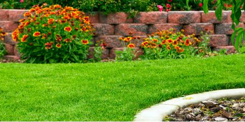 A Guide to Artificial Turf Care, Bullhead City, Arizona